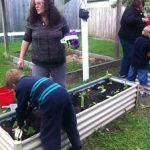 Boy planting seedlings
