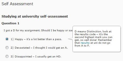 Self-Assessment Tool Example 1